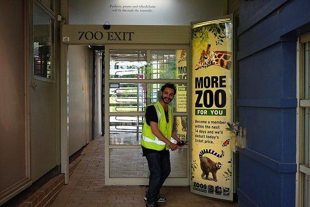 ...hayvanat bahçesine ellerini kollarını sallayarak girip çıktılar.