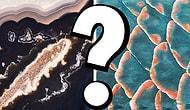 Тест: то, что на фото, находится на Земле или в космосе?