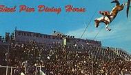 Лошадиный дайвинг: 17 винтажных фотографий забытого спорта