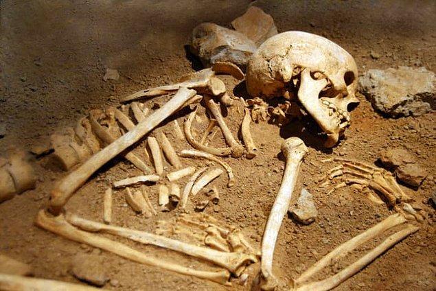 1. İnsan kanından ve kemiğinden yapılan ilaçlar 16. ve 17. yüzyılda kullanılırdı.