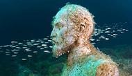 Подводные вожди: что на дне Чёрного моря делают Ленин, Сталин и Дзержинский?