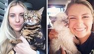 """14 недовольных котиков, которые плевать хотели на """"эти ваши селфи"""""""