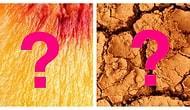 Тест: Сможете ли вы угадать, где на фото в увеличенном виде еда?