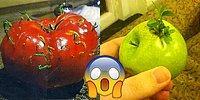 12 шокирующих фото овощей и фруктов, которые удивят даже опытного садовода