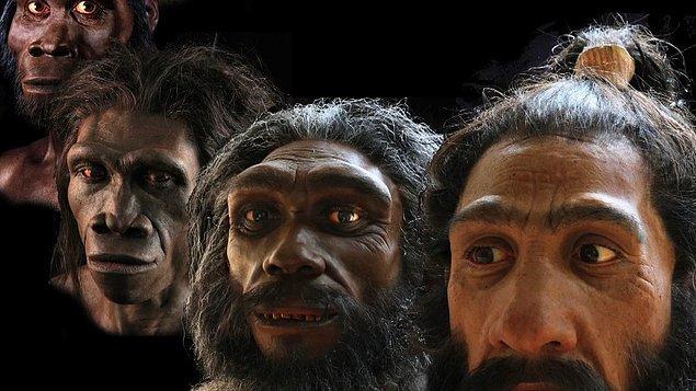 Fakat bulunan yeni ayak izinden yola çıkılarak yapılan araştırmada, Girit'te 5.7 milyon yıl evvel yaşam olduğu sürüldü.