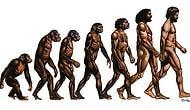 11 распространенных научных мифов, которые пора развенчать