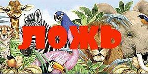 Вы и поверить не могли, что эти 10 фактов о животных - полная чепуха