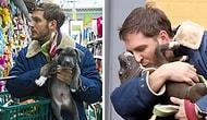 Эти душещипательные фото Тома Харди с щенками и песиками растопят ваше сердце