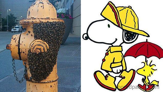 12. Başına buyruk, şirin karakter Snoopy...