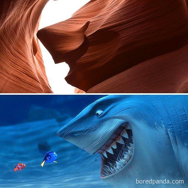 29. Kayıp Balık Nemo...