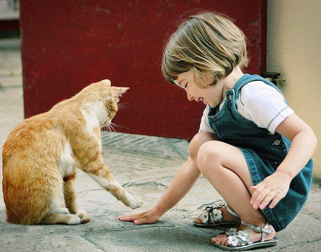 1. Öncelikle eğer çocukluğunuzdan beri hayvanlarla ilişkiniz iyiyse bilirsiniz ki, bu görüp görebileceğiniz en saf sevgidir.