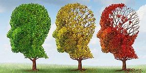 Тест: Узнайте, какой у вас психологический IQ?
