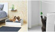 IKEA наконец стала делать мебель для питомцев, и все любители животных в полном восторге!