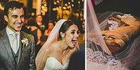 Реакция этой пары на бездомного пса, сорвавшего им свадьбу, покорила интернет