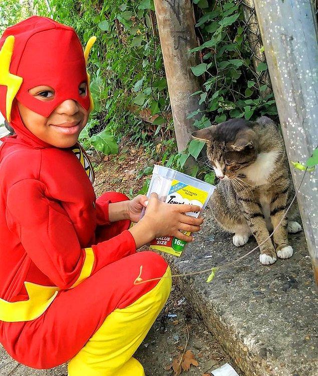 """En """"soğuk"""" kediler bile bu küçük kahramanın büyüsüne karşı koyamıyor. 😻"""