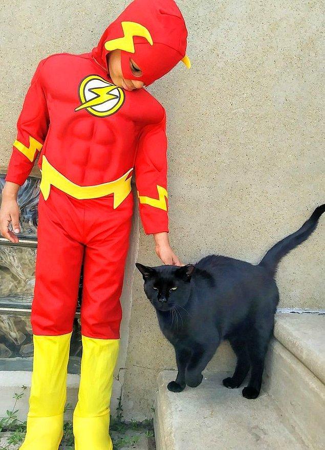 Teyzesi, Shon'un kedilerin algılayabildiği büyüleyici bir etkisi olduğunu düşünüyor. 💫