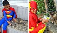 Этот 5-летний мальчик настоящий супергерой, спасающий бездомных кошек