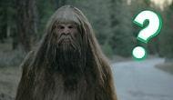 Тест: Сможете ли вы спастись из леса целым и невредимым?