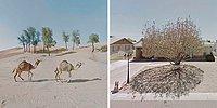 Женщина, страдающая агорафобией, стала сенсацией в Instagram, куда она выкладывает скриншоты своих виртуальных путешествий по Google Maps