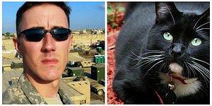 Бездомный кот спас ветерана от самоубийства: история о невероятном чуде и дружбе