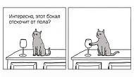 О чем говорят животные: 10 остроумных комиксов от художника, понимающего язык зверей
