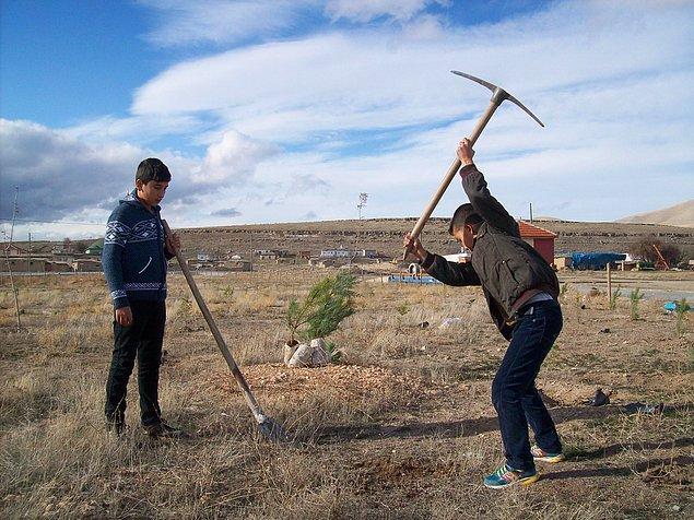 11 yaşındaki Eyüp Kurşunlu ile 14 yaşındaki Osman Gültekin, yaşadıkları yerin çehresini değiştirip ağaçlarla çevrili olması için bir şeyler yapmaya karar verdi.