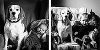 Словно кадры из фильма: Отец в течение трех лет фотографирует сына и домашнего пса в одном кресле! 😍