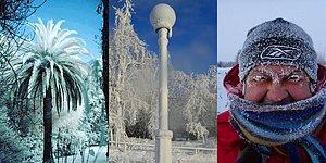 12 доказательств, что зима 2018 потеряла последнюю совесть