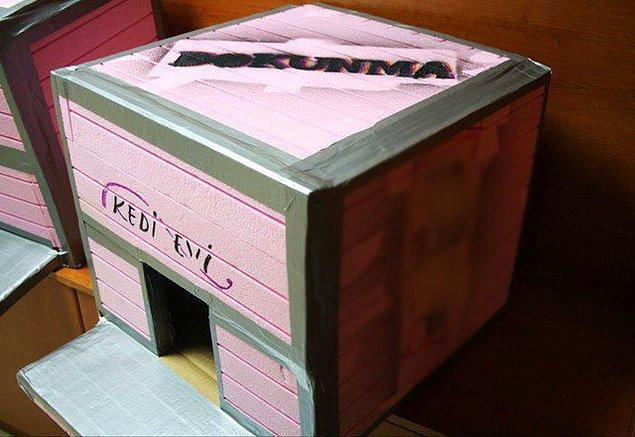 1. Hayvan sevgisi aşılamanın en iyi yolu: Kedi evi yapın!