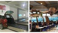 41 креативная идея в аэропортах, увидев которые вы захотите там побывать
