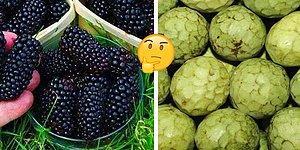 Тест: Сможете ли вы узнать все эти экзотические фрукты и ягоды?