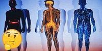 Тест: Насколько хорошо вы знаете собственный организм?