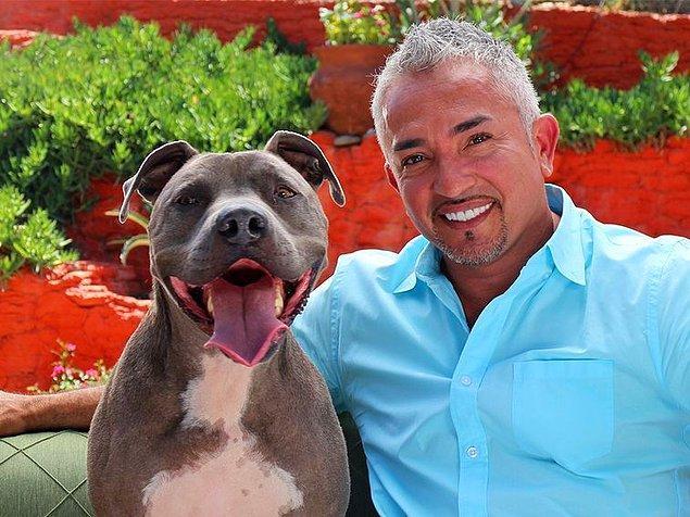 12. Kötü köpek yoktur, kötü eğitilmiş köpek vardır. Bu arada köpeklere fısıldayan adamın eğitmen köpeği de pitbulldur. :)
