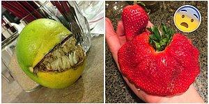"""11 фото фруктов, которые восхитят вас, и 11 фото, от которых захочется сказать: """"Фу, уберите это от меня!"""""""