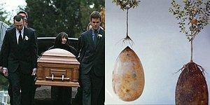 Не нравится идея быть кремированным? Промессия – новый тренд среди тех, кто хочет заранее позаботиться о своем погребении