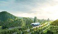 Зеленые новости: В 2020 году в Китае стартует стройка первого в мире города-леса