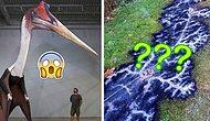 """""""Обалдеть, что это?!"""": 12 совершенно непонятных фото, которые может объяснить лишь наука"""