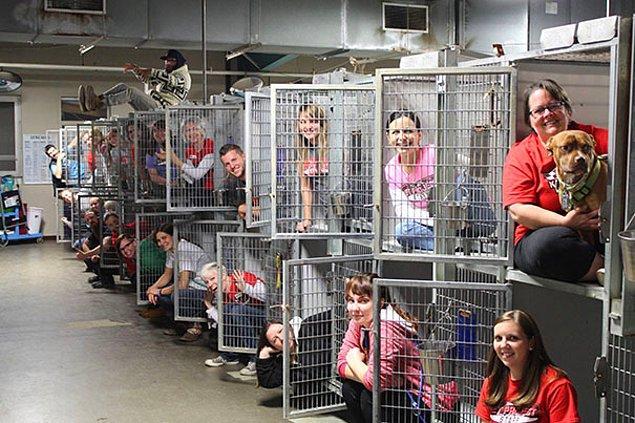 5. Missouri Hayvan Barınağı, boş kalan kafesleri yani sahiplenilen onlarca hayvanı işte böyle kutladı.