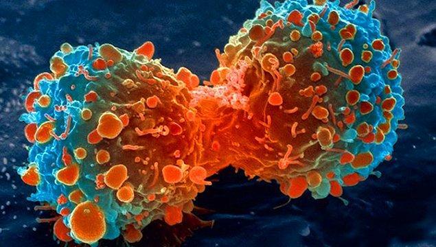 Risk yok mu? Var. Yeni hücrelerin kontrolsüz bölünmelerinin önüne geçilemediği takdirde, kök hücre yöntemi kansere sebep olabilir.