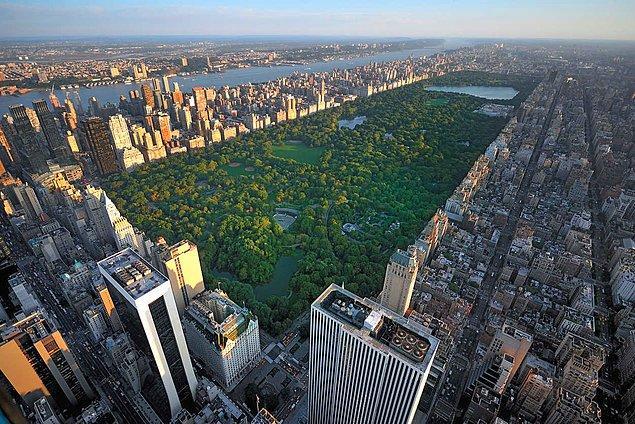 Paris ormanının büyüklüğü New York'taki dünyaca ünlü Central Park'ın da beş katı büyüklüğünde olacak.