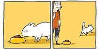 Самые смешные комиксы для тех, кто обожает котэ 😻