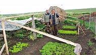 Köy Yaşamını Canlandırarak Kırsal Kalkınma İçin Fark Yaratıyorlar: Boğatepe Çevre ve Yaşam Derneği