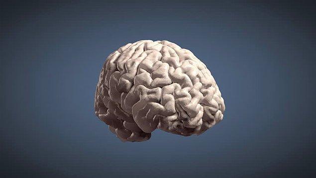 17. Beynimiz bir görüntüyü 13 milisaniye gibi kısa bir sürede işleyebilir. Bu göz kırpmaktan daha kısa bir süredir.