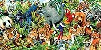 Только 1 человек из 50 способен узнать всех этих животных по узорам на шкуре