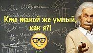 Тест: Филантроп или мизантроп? Если вы наберете 11/11 в этом тесте, то вы образованнее 85% населения России