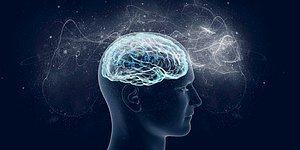 Этот тест проверит работу вашего мозга и расскажет ваш ментальный возраст