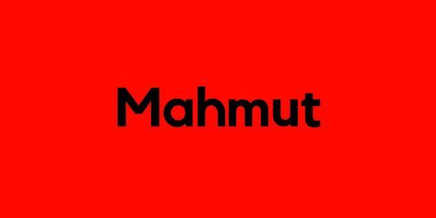 Mahmut!
