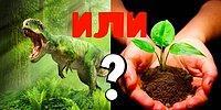 Динозавр или растение? Только гении биологии смогут пройти этот тест на 10/10