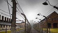 Выжившие в аду: Люди, которым удалось остаться в живых в немецких концлагерях