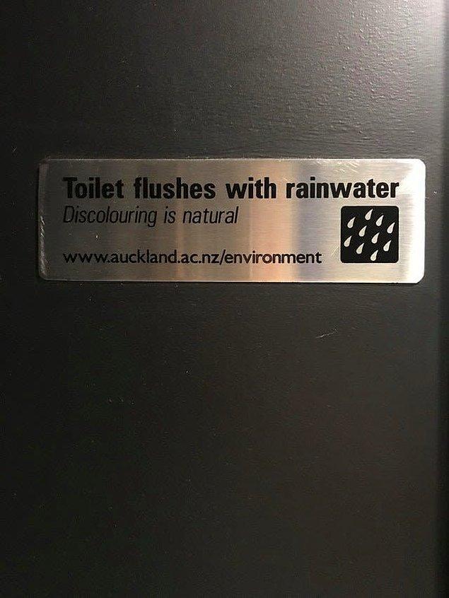 13. Sifonda yağmur sularının kullanıldığı bir tuvalet!